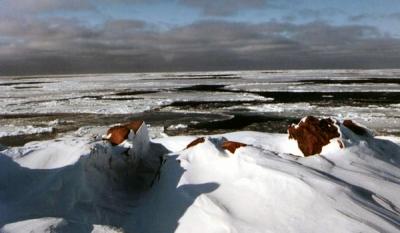 Арктика под присмотром
