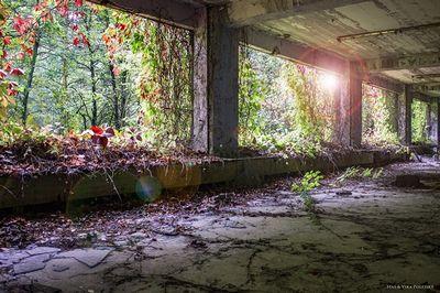 Чернобыль не отпускает