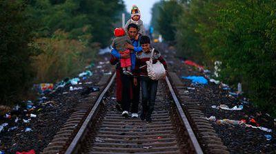 Данные евростата показали, когда беженцы из сирии направились в ес