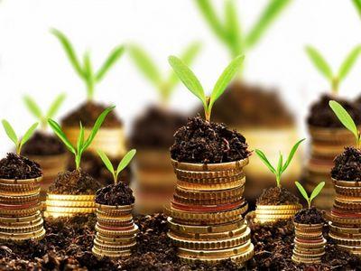 «Дкз-2020» дает возможность развиваться начинающим фермерам