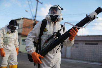 Эксперт: риск распространения вируса зика минимален