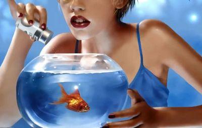 К чему снится аквариум с золотыми рыбками или с пираньями? основные толкования разных сонников - к чему снится аквариум