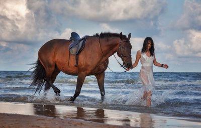 К чему снится конь, седлать коня, скакать на коне? основные толкования разных сонников - к чему снится конь