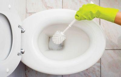 К чему снится унитаз: новый, странный, в необычном месте, мыть унитаз? основные толкования - к чему снится унитаз