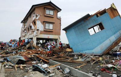 К чему снится землетрясение – почему и зачем приходят сны-катастрофы. основные толкования: к чему снится землетрясение