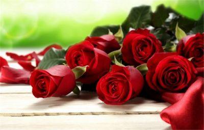 К чему снятся красные розы? основные толкования, к чему снятся красные розы