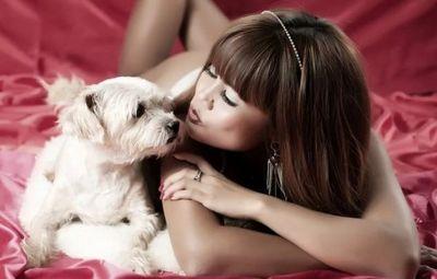 К чему снятся собаки женщине: в доме, на улице, в неожиданных местах? основные толкования - к чему снятся женщине собаки