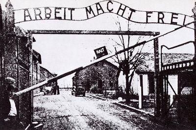 Как 72 года назад освобождали концлагерь аушвиц (освенцим)