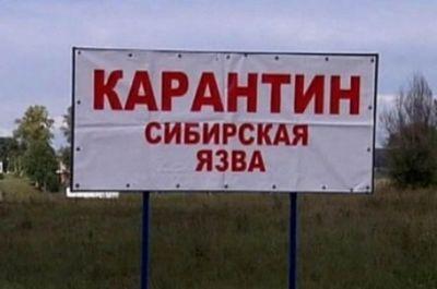 Карантин из-за сибирской язвы в карагандинском селе продлится 15 дней