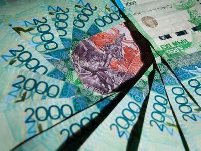 Казахстанские фермеры рассказали, как за месяц заработать миллион