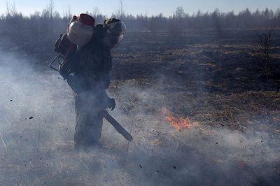 Корреспондент газеты.ru вместе с сотрудниками greenpeace тушила горящий торф в тверской области