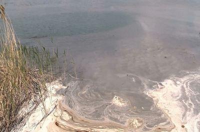 Костанайские экологи начали внеплановую проверку шубаркольского золоотвала