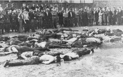Литовских жертв холокоста увековечили памятными камнями - «общество»