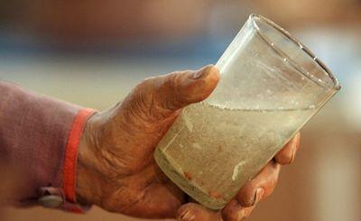 Миф о пьющих финнах не соответствует действительности - «наука»