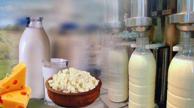 Молочно-товарная ферма открылась в прииртышье