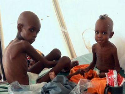 Нигерия на пороге гуманитарной катастрофы