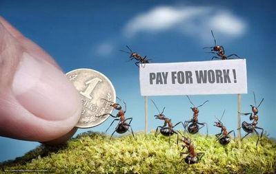 Нольплюс: муравьи, качори и дружба по-советски