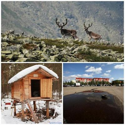 О чем пишут тюменские блогеры: про музеи и экологию