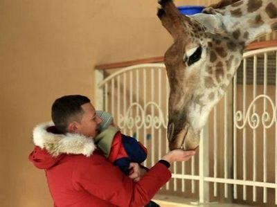 Парк счастливых животных можно посетить в киеве