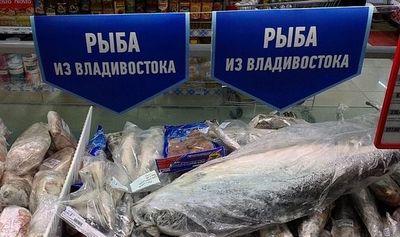 Почему рыбколхоз восток1 сворачивает свой проект в рамках свободного порта
