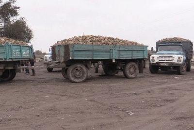 Почему в кыргызстане фермеры терпят убытки каждый год