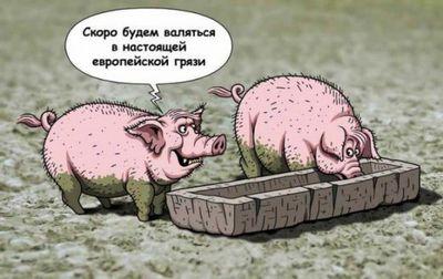 Польша готовит украину кроли добычи: мнение - «общество»