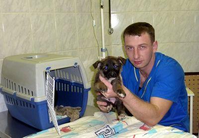 Президиум санкт-петербургского городского суда смягчил приговор ветеринарному врачу александру шпаку, ранее осужденному за сбыт кетамина