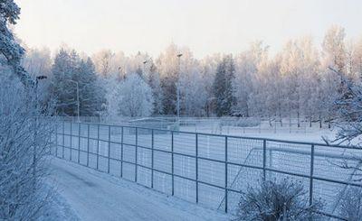Россия открывает ворота на границе, в финляндию направляется непрекращающийся поток людей — в книге описывается хаос на границе - «наука»