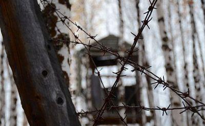 «Россияне — жертвы террора. они боятся власти и подчинятся чему угодно» - «наука»