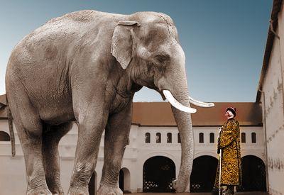 Русский мир красного слона