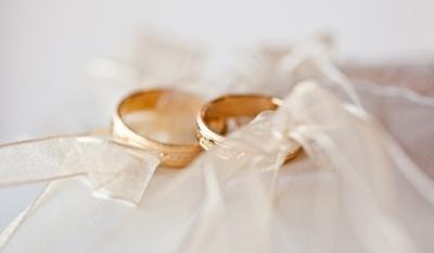 Сенат франции одобрил однополые браки