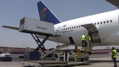 Столичные аэропорты ожидают массовые проверки