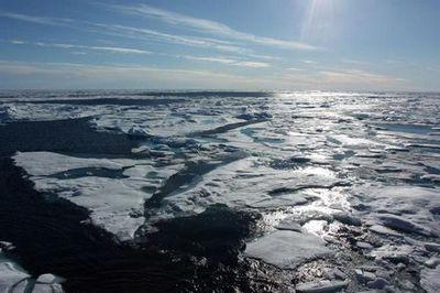 Технологии тюменских экологов планируют применять в арктических центрах