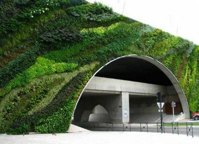 В мексике с загрязнением воздуха борются с помощью вертикальных садов