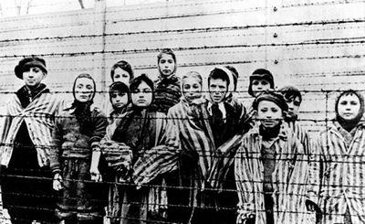 Зачем нацисты штудировали расовые законы сша? - «наука»