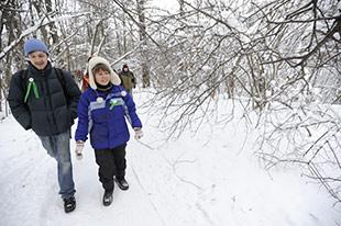 Защитники химкинского леса надеются, что медведев одумается