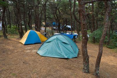 Женщин ждут в палатках здоровья