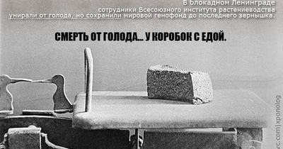 Жизнь и смерть в блокадном ленинграде