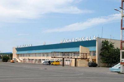 Жизни пассажиров аэропорта махачкалы стали заложниками птиц
